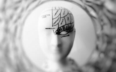Neurowissenschaften und Lernen